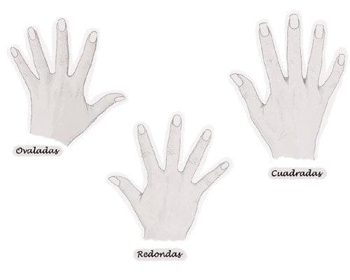 Según tus manos así han de ser tus uñas